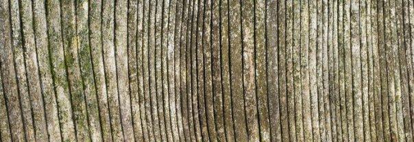 weathered-oak-3-1186047