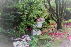 fairy-tale-1376064 (2)