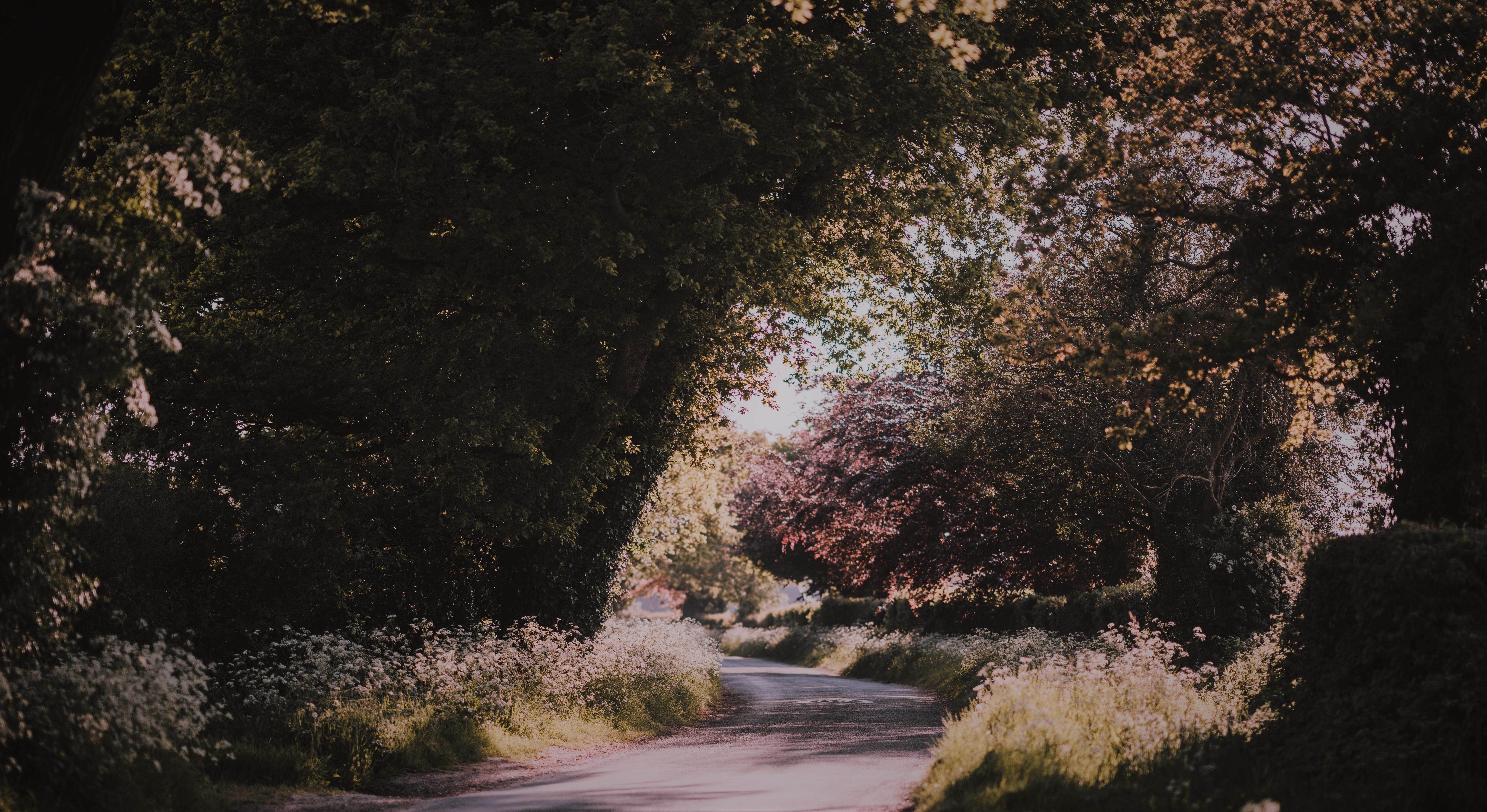 bend road