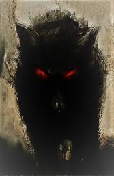 black dog (2)
