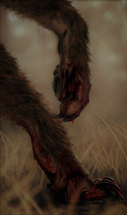 blackshuckfoot (3)