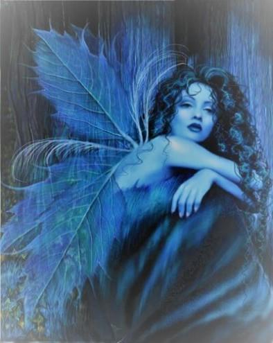 blue fairy (2)
