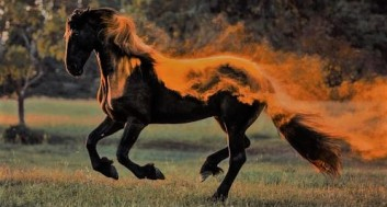 demon horse3 (2)