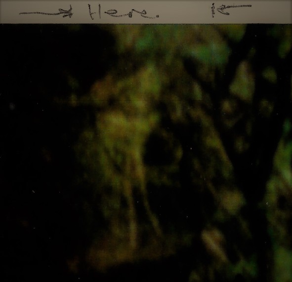Pic 08B filter