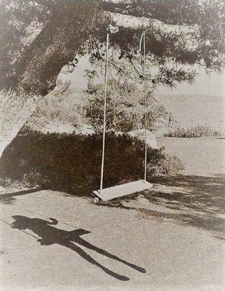 shadow (2)